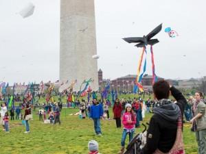 herry blossom kite festival