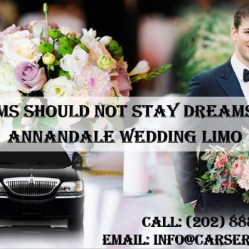 Annandale Wedding Limo