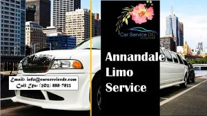 Annandale Limo Services